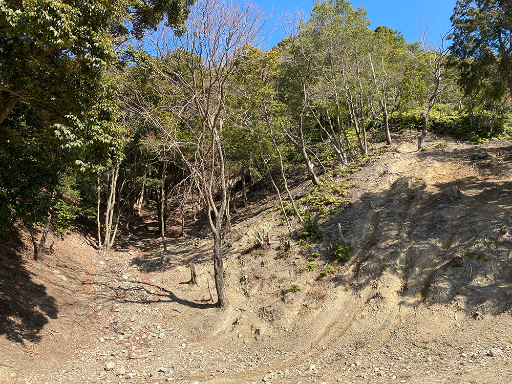 Yuasa Trial Park by Serow